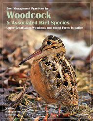 Cover of the PDF file titled Best Management Practices for Woodcock and Associated Bird Species