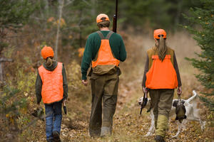 Hunters seek grouse in young forest habitat