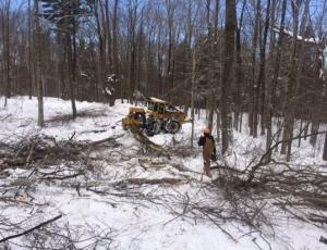Logger Roger Duryea readies trees for transport