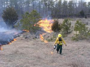 starting a controlled burn