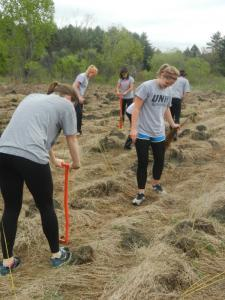 Volunteers plant shrubs at Bellamy River WMA