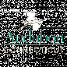 Audubon Connecticut Logo