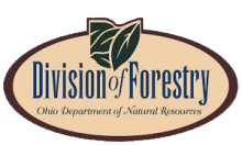 Ohio DNR Division of Forestry Logo